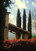Three cypresses in front of L'Essicatoio